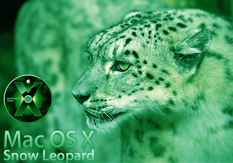 Sedangkan dari apple, os terbaru yang diluncurkan adalah mac os x 106 dengan kode snow leopard