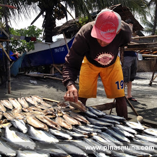 sundrying bangsi flying fish in Maitum Sarangani