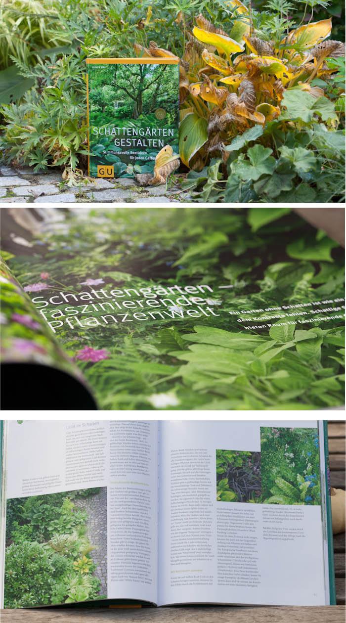 Gartenblick gartenfotografie schatteng rten gestalten - Schattengarten gestalten ...