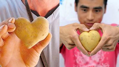 ubi kentang bentuk hati
