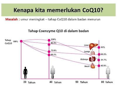 semakin meningkat usia, CoQ10 semakin kurang dihasilkan