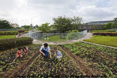 garden children