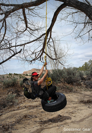 desert tire swing