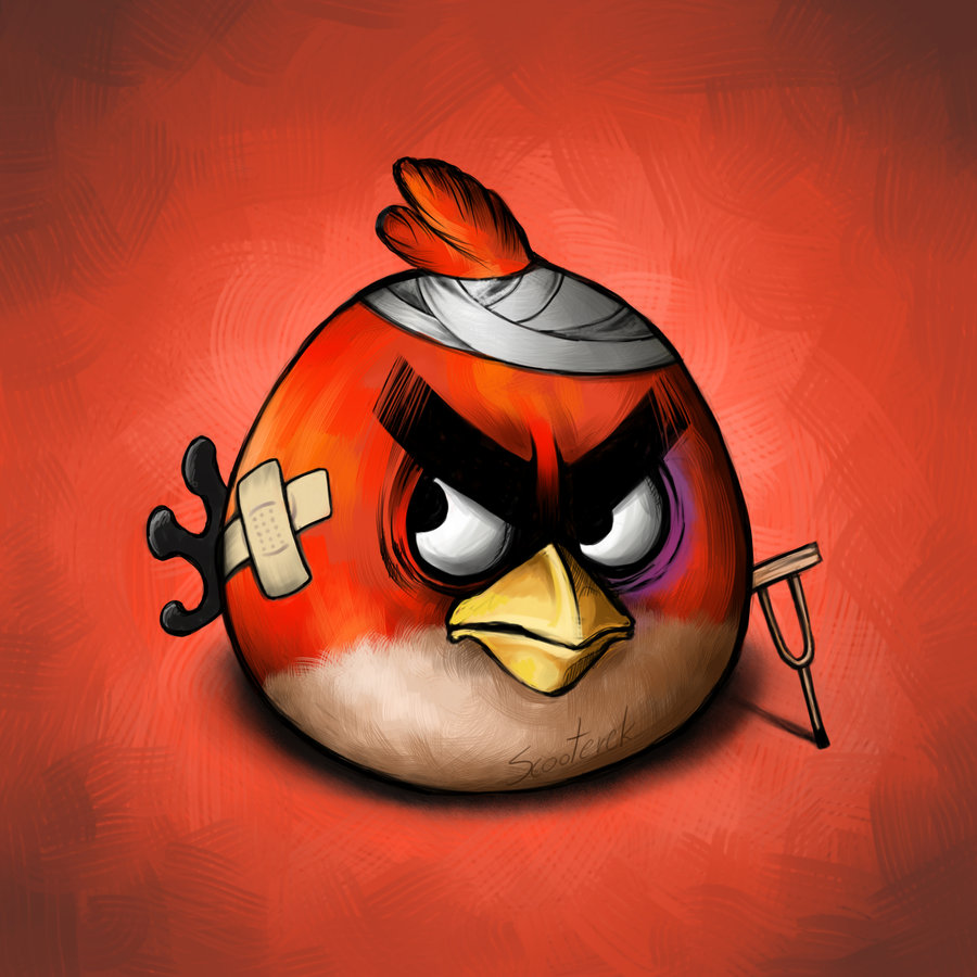 my funny wounded angry birds pictures. Black Bedroom Furniture Sets. Home Design Ideas