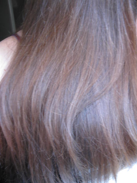 ma troisime coloration pose de 5h en photos - Coloration Logona Cheveux Blancs