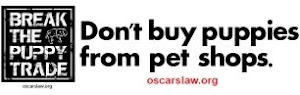 I want Oscar's Law
