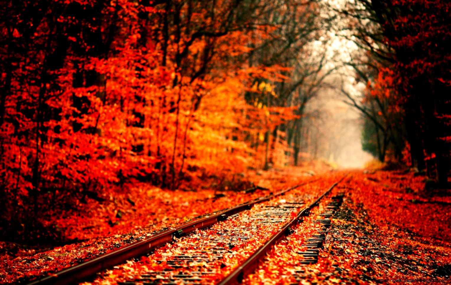 autumn desktop wallpapers 4eh  Image Colony