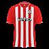 Southampton FC - 2014/15