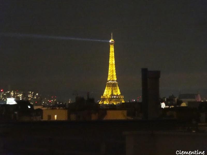 Le blog de clementine paris octobre 2013 for Appart hotel paris au mois