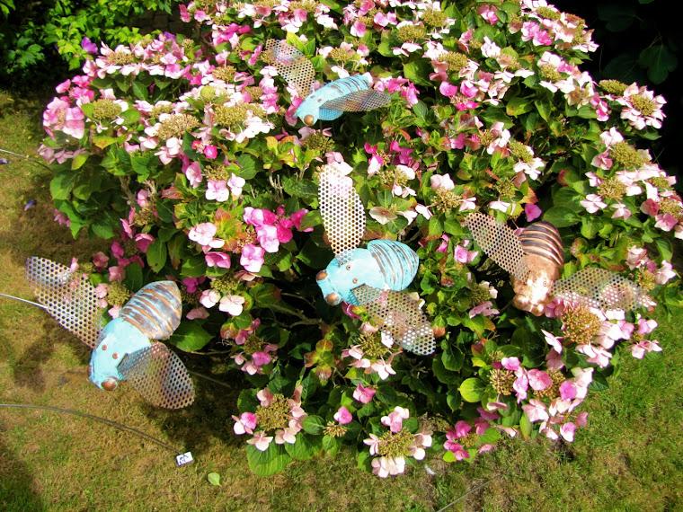 Bees £50 each