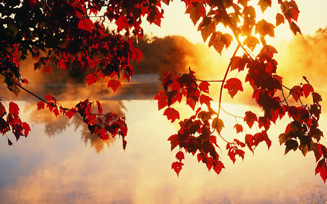 Sonbahar manzaraları sonbahar manzaraları resimleri sonbahar