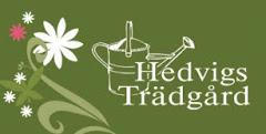 Kika in till Hedvigs trädgård!