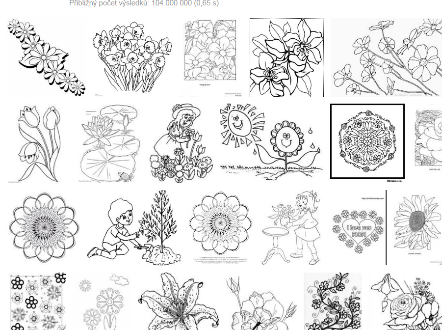 Květiny - omalovánky