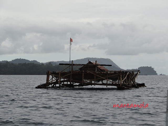 Floating fishing farm