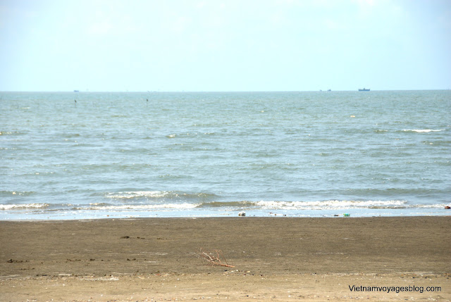 Travel to Can Gio Beach, Saigon - Photo An Bui