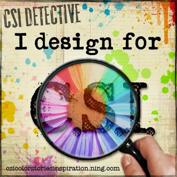CSI DT Nov 2013 - 2015