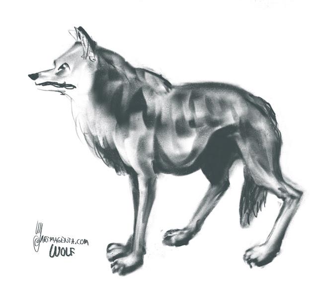 Wolf by Artmagenta