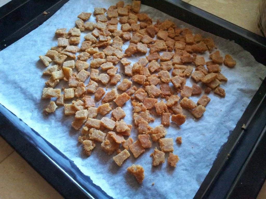 biscotti per il gatto in forno