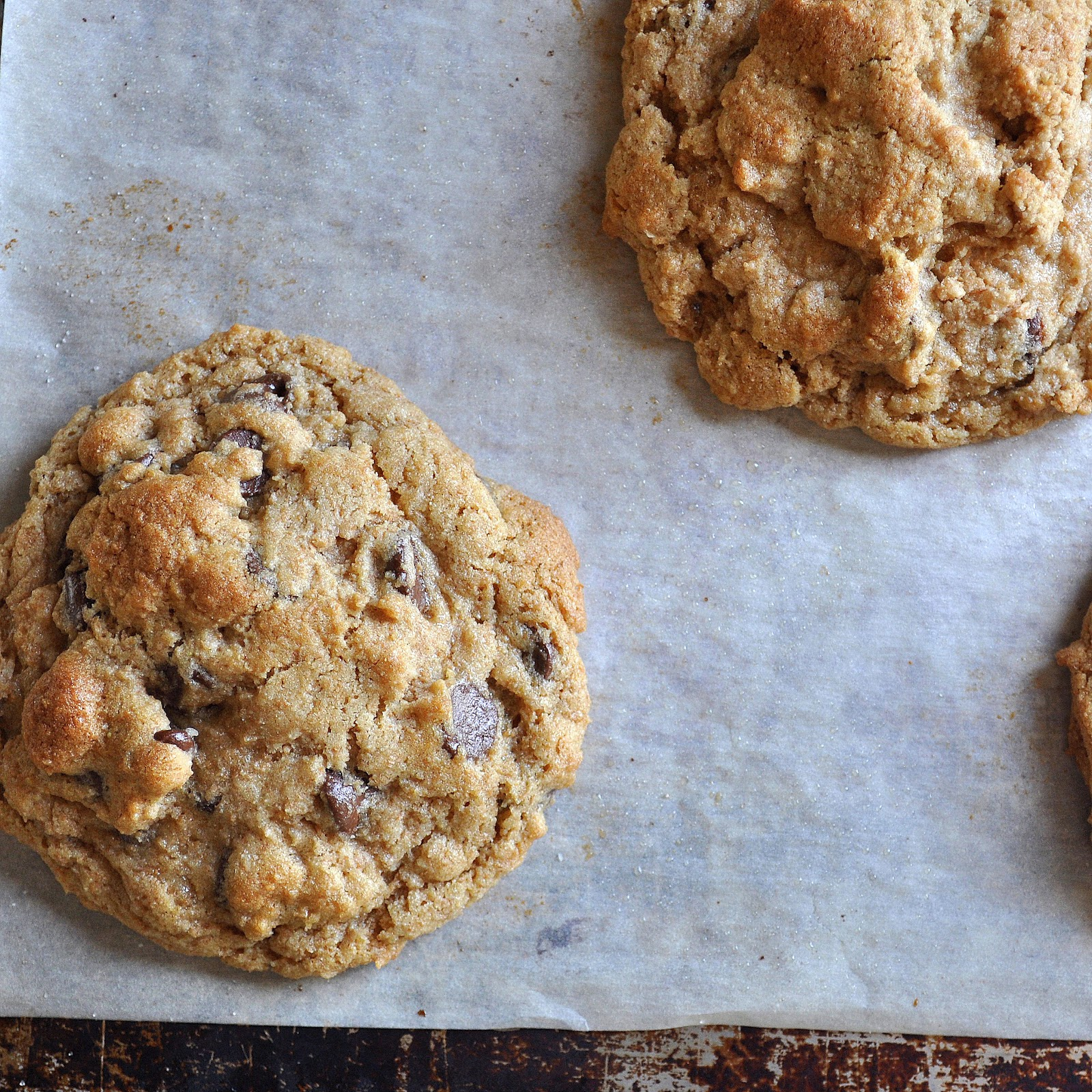 BREANNA'S RECIPE BOX: Whole Wheat Chocolate Chip Cookies