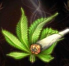 La conspiración de la marihuana