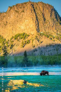 Yellowstone National Park (Best Honeymoon Destinations In USA) 5