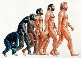 http://www.fenomania.com/2012/05/teori-evolusi-manusia-menurut-alquran.html