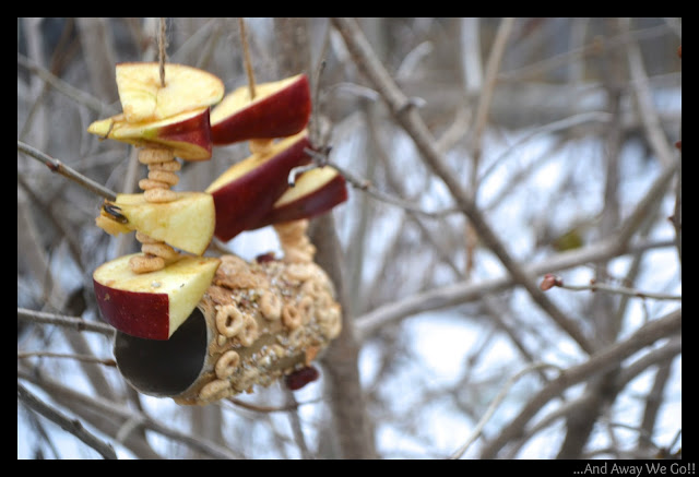 bird+feeder+4 Craft Ideas for Kids: Spring Bird Feeder