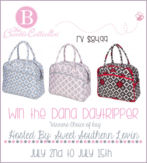 Dana Daytripper Diaper Bag Giveaway