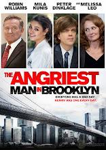 Un loco suelto en Nueva York (2014)