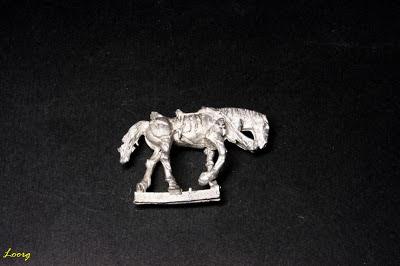 Rotting Flesh Horse 3
