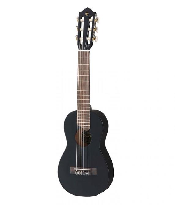 Harga Gitar Akustik Elektrik Epiphone