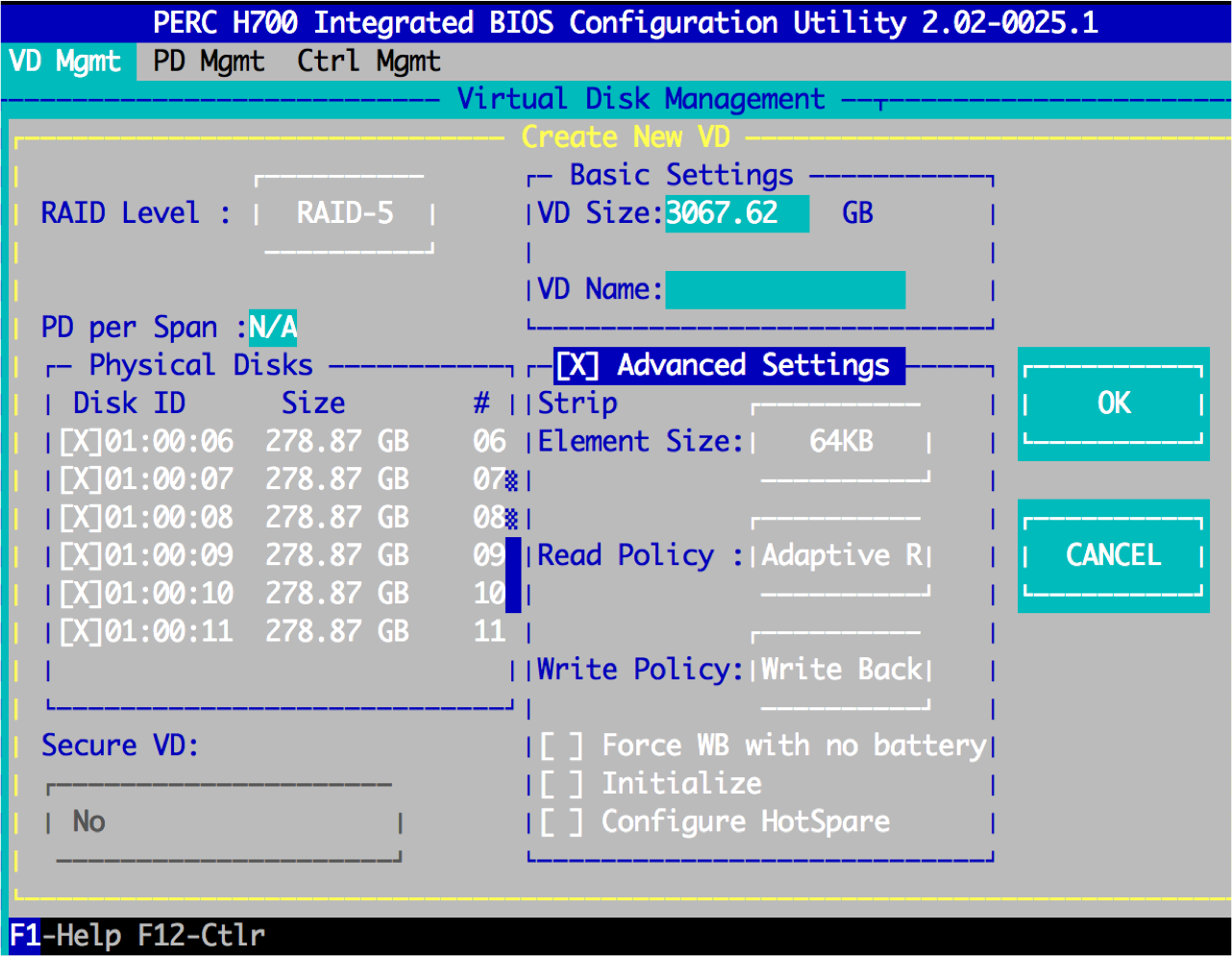 Initialize It Will Destroy All Data On Virtual Disk