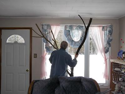 man reverses cat tree