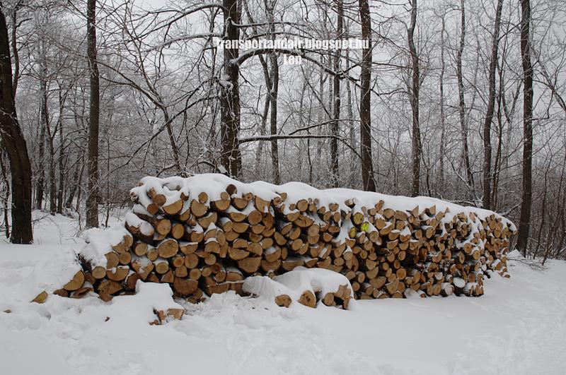 Márciusi tél a Normafán