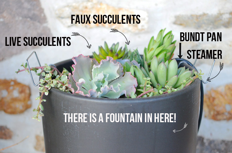 Fountain in a Pot SmartPond Modernica Photo by Amy Renea at A Nest for All Seasons