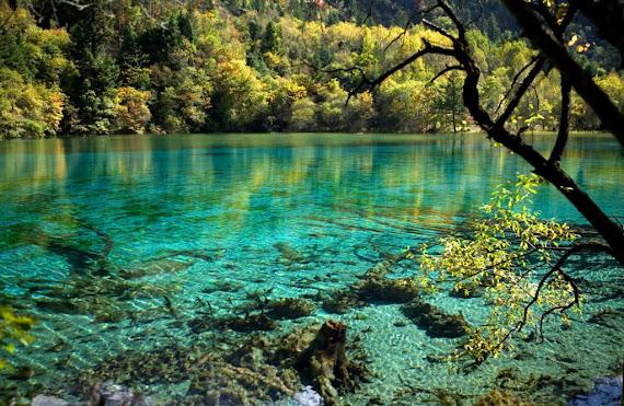Five Flower Lake