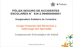 Poliza de Accidentes