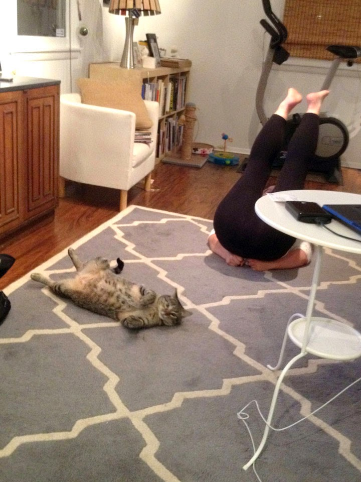 Kuma doing Yoga with mom