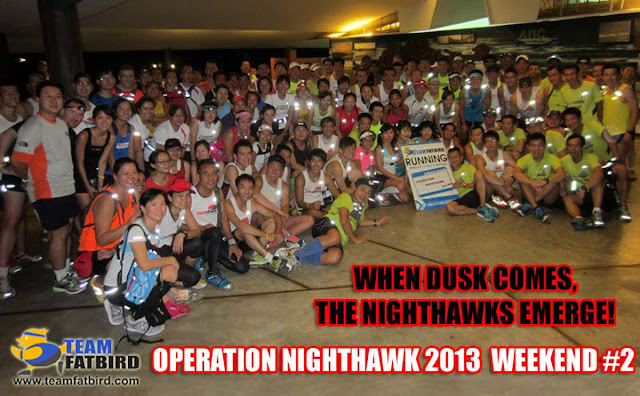 Ops NightHawk 2013: The Wild Night Run