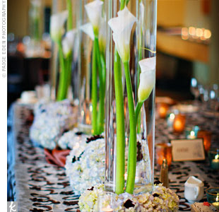 Forevemore Events: Cis for Calla Lily: Flowers 101