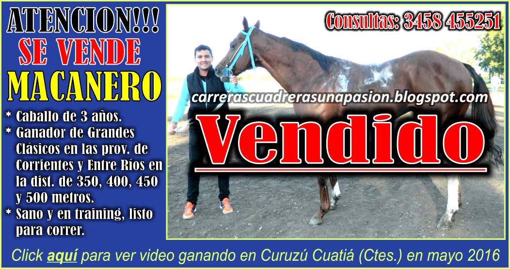 MACANERO - VENTA - 05.07.2016