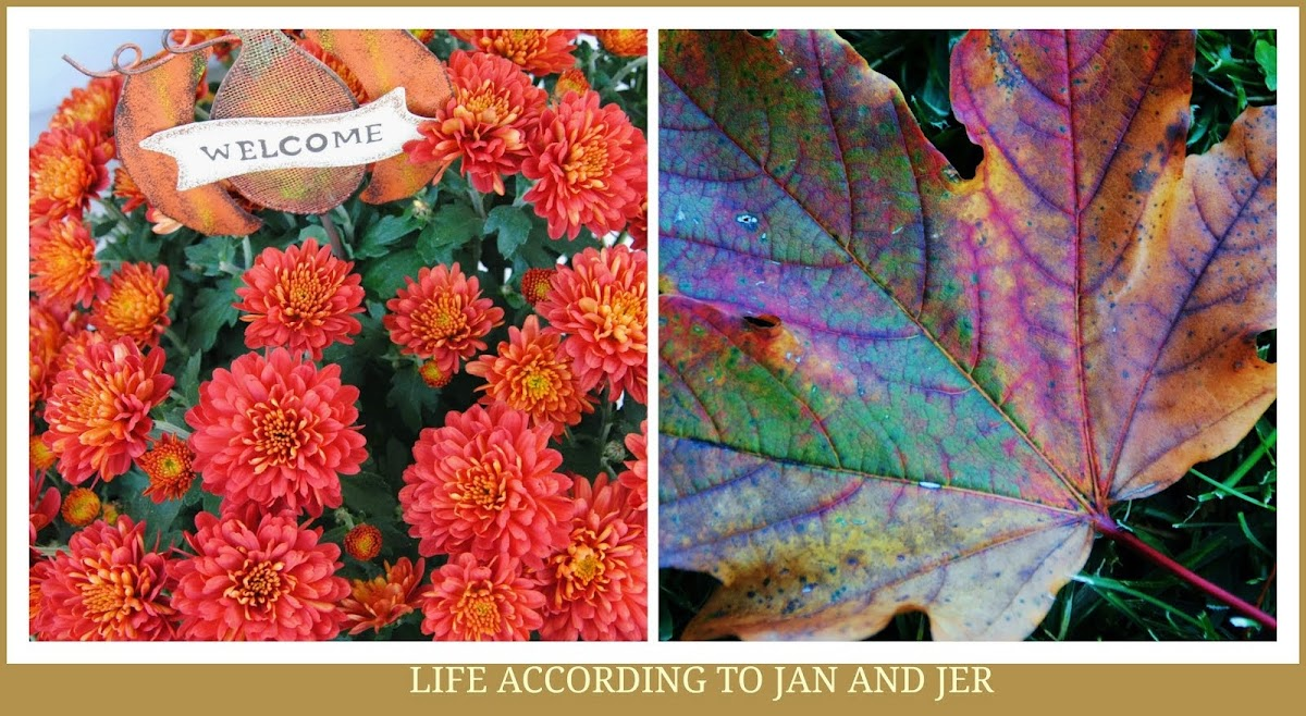 Life According to Jan and Jer