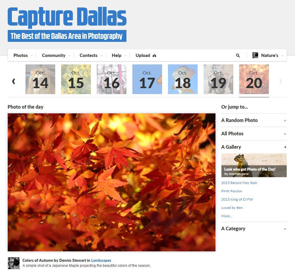 Capture Dallas -