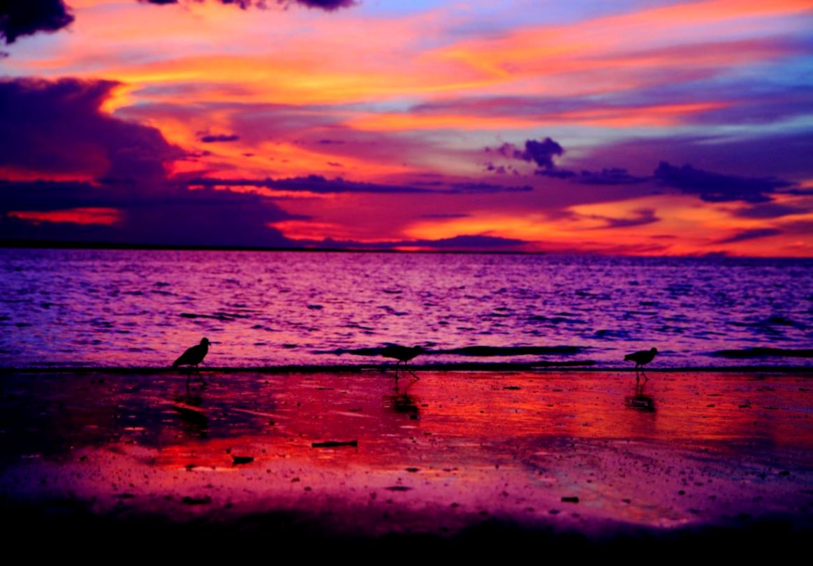 Beautiful Beach Sunset Tumblr   wallpaper