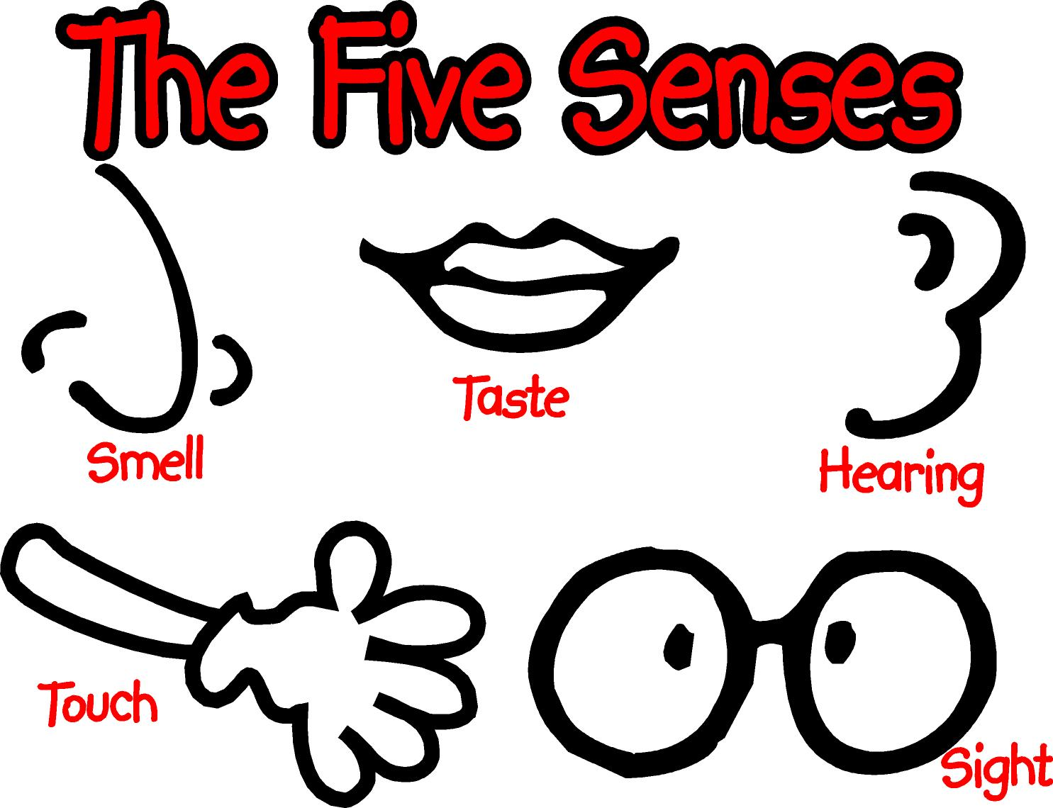 Canción en inglés: five senses