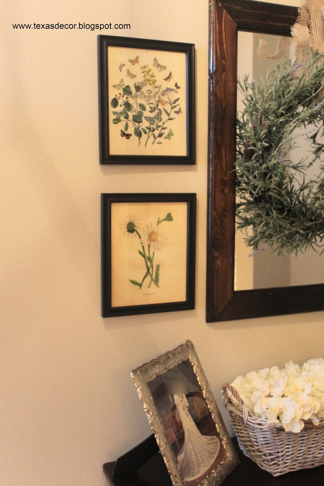 graphics fairy botanical prints in gallery wall