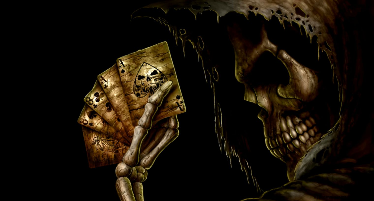 Skull Wallpaper Free Download   Free   Download