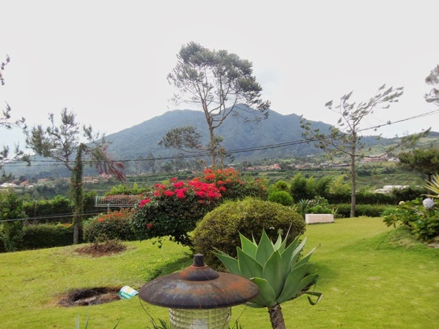 http://vilaistanabungavilage.blogspot.com/2015/04/informasi-dan-reservasi-villa-istana.html