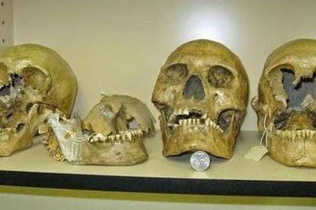 bones dating earlier than the bible
