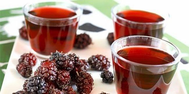 Resep Jus Mulberry yang Menyehatkan